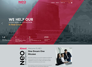 Neodevelopers